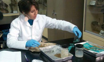Olimpiada de Biología, a la caza de jóvenes talentos en ciencias