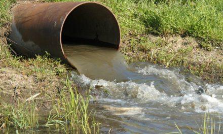 Crea IPN sistema para eliminar fármacos en aguas residuales