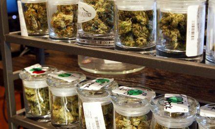 """COFEPRIS dirá """"No"""" a solicitudes de uso lúdico de la marihuana"""