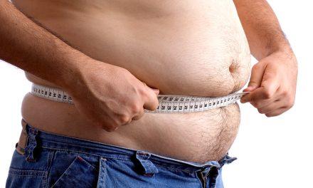 Obesos y delgados consumen mismas calorías al día