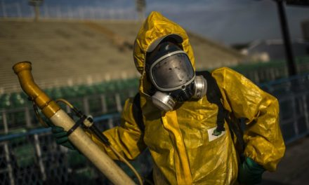 Descarta OMS relación entre pesticidas y casos de microcefalia en Brasil