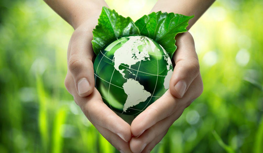 La sustentabilidad en la industria farmacéutica: la evolución continua