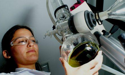 Reformas a la ley de ciencia impulsarán inversión y desarrollo científico: Graue