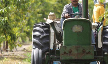 Resistencia a los antibióticos, un peligro para la seguridad alimentaria: FAO