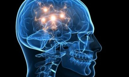 Epilepsia, principal enfermedad neurológica en México