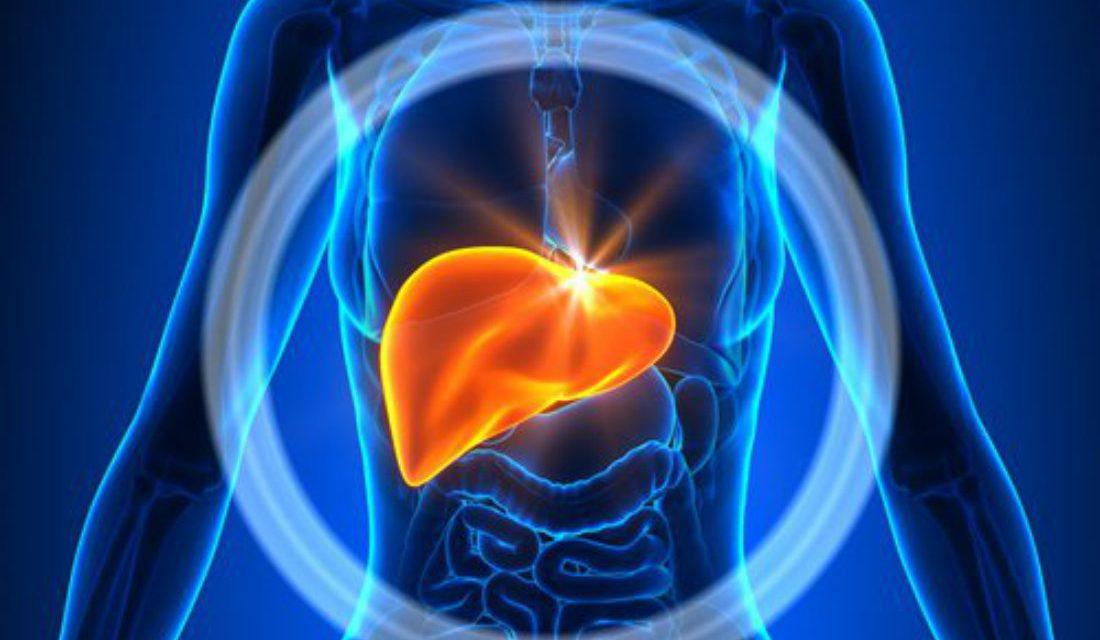 Fármaco que controla la cirrosis hepática, primer lugar en investigación básica del Premio CANIFARMA