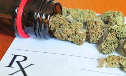Secretaría de Salud y COFEPRIS listas para marihuana medicinal