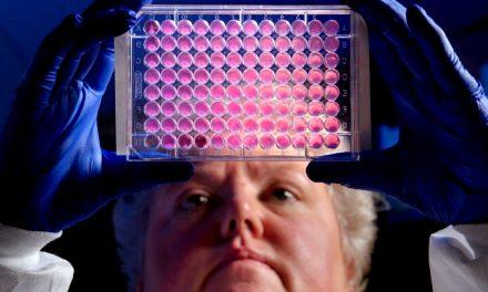 'Superbacterias' de malaria, E. coli y tuberculosis son más resistentes a los antibióticos