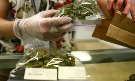 Llaman especialistas a anteponer la bioética en el uso medicinal de la marihuana