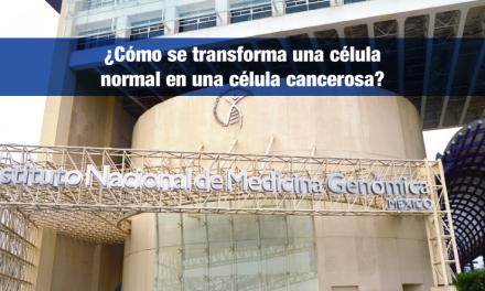 ¿Cómo se transforma una célula normal en una célula cancerosa?