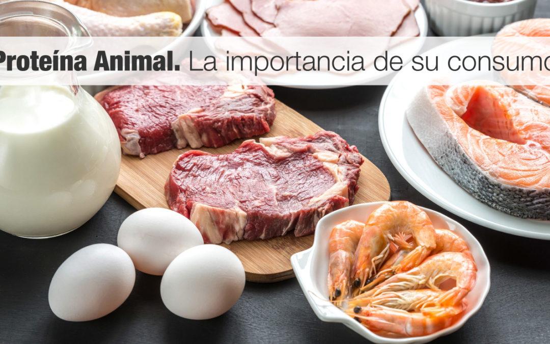 Proteína Animal. La importancia de su consumo