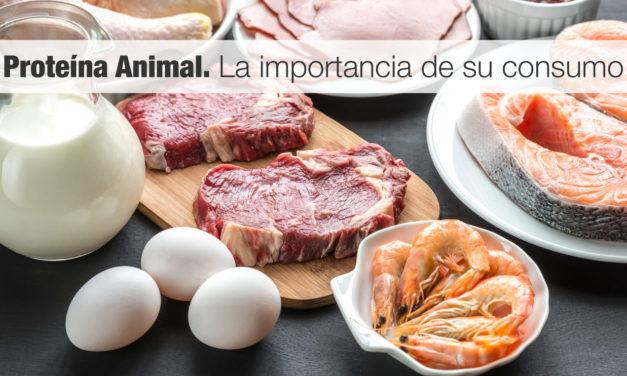 <strong>Proteína Animal.</strong> La importancia de su consumo