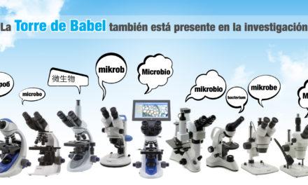 La Torre de Babel también está presente en la investigación