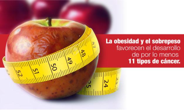 La<strong> obesidad y el sobrepeso</strong> favorecen el desarrollo de por lomenos <strong>11 tipos de cáncer.</strong>