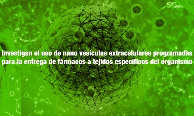 Investigan el uso de nano vesículas extracelulares programadas para la entrega de fármacos a tejidos específicos del organismo