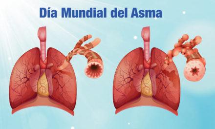 """<p class=""""p1""""><strong>Día Mundial del Asma</strong></p><p class=""""p2""""></p>"""