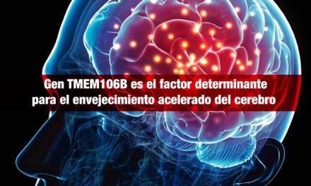 Investigadores norteamericanos identifican al gen<strong> TMEM106B,</strong> como factor determinante para el envejecimiento acelerado del cerebro y el desarrollo de enfermedades neurodegenerativas