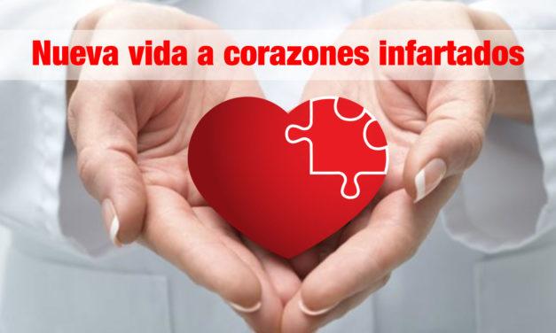 Nueva vida a corazones infartados
