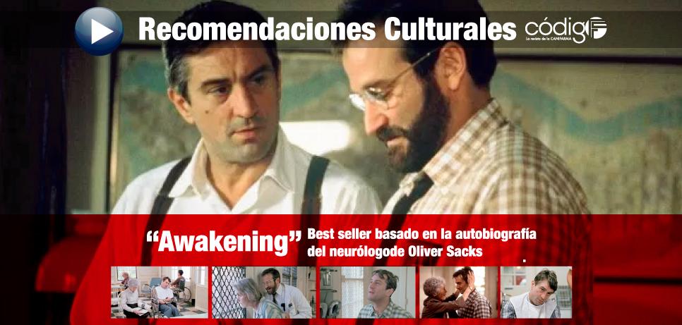 Despertares (Awakening)