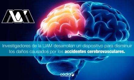 Investigadores de la UAM desarrollan un dispositivo para disminuir los daños causados por los accidentes cerebrovasculares