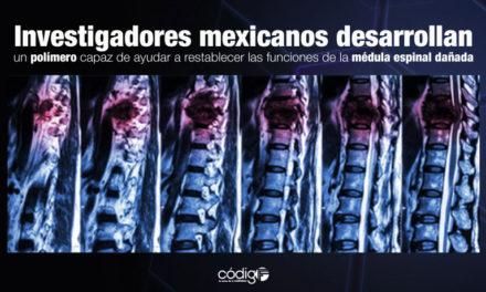 Investigadores mexicanos desarrollan un polímero capaz de ayudar a restablecer las funciones de la médula espinal dañada